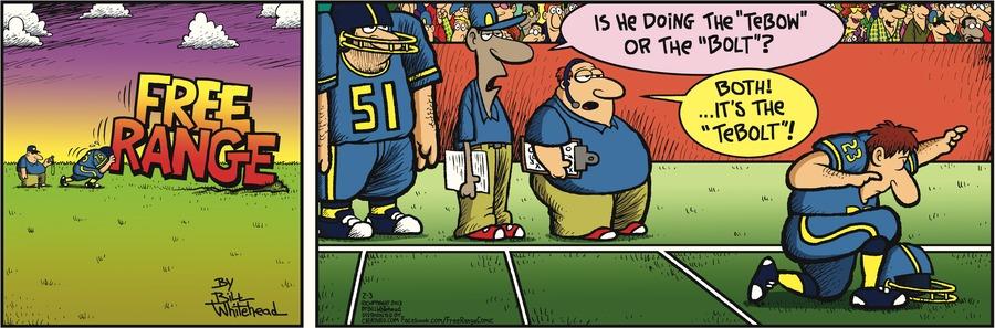 Free Range for Feb 3, 2013 Comic Strip
