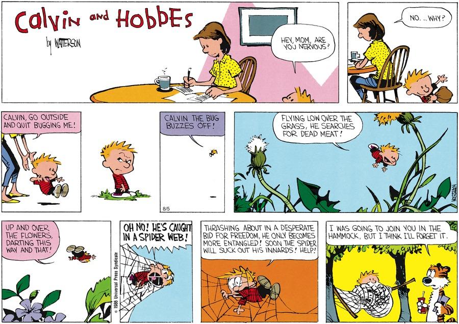 Calvin and Hobbes for Jul 27, 1986 Comic Strip