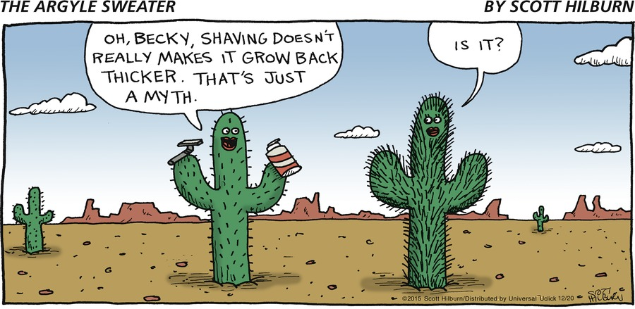 The Argyle Sweater Comic Strip for December 20, 2015