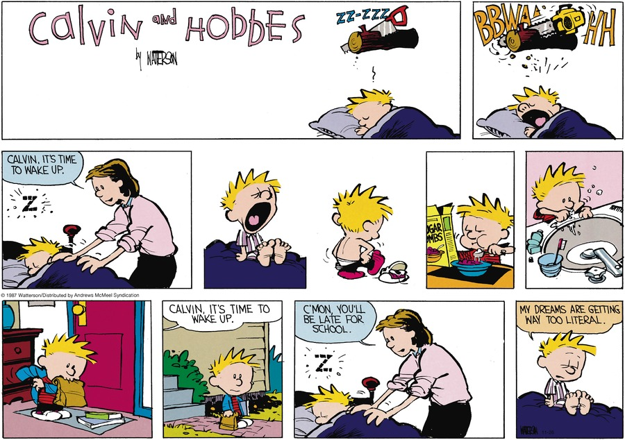 Calvin and Hobbes Comic Strip for November 26, 2017