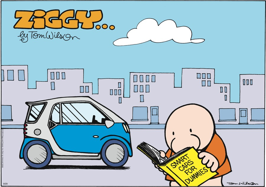smart cars for dummies