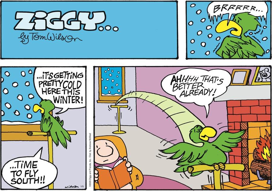 Ziggy Comic Strip for January 05, 2020