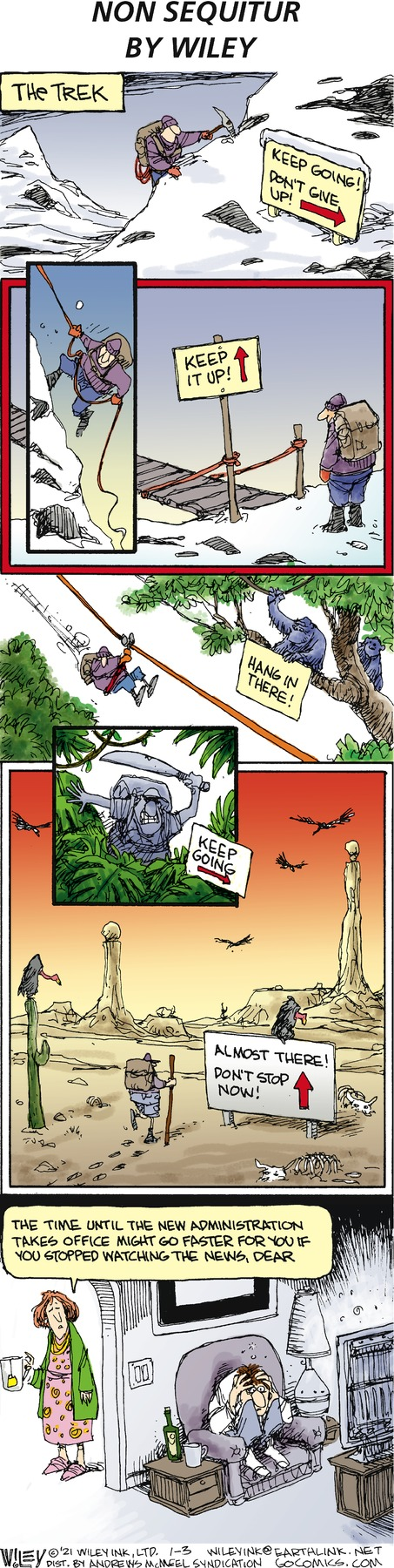 Non Sequitur Comic Strip for January 03, 2021