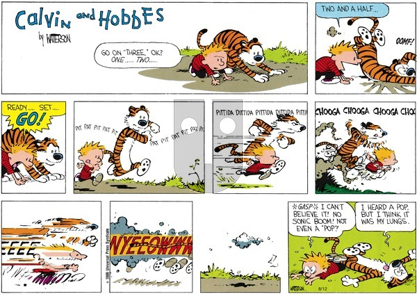 Calvin and Hobbes - Sunday August 10, 1986 Comic Strip