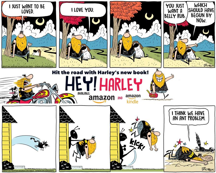 Harley Comic Strip for November 22, 2020