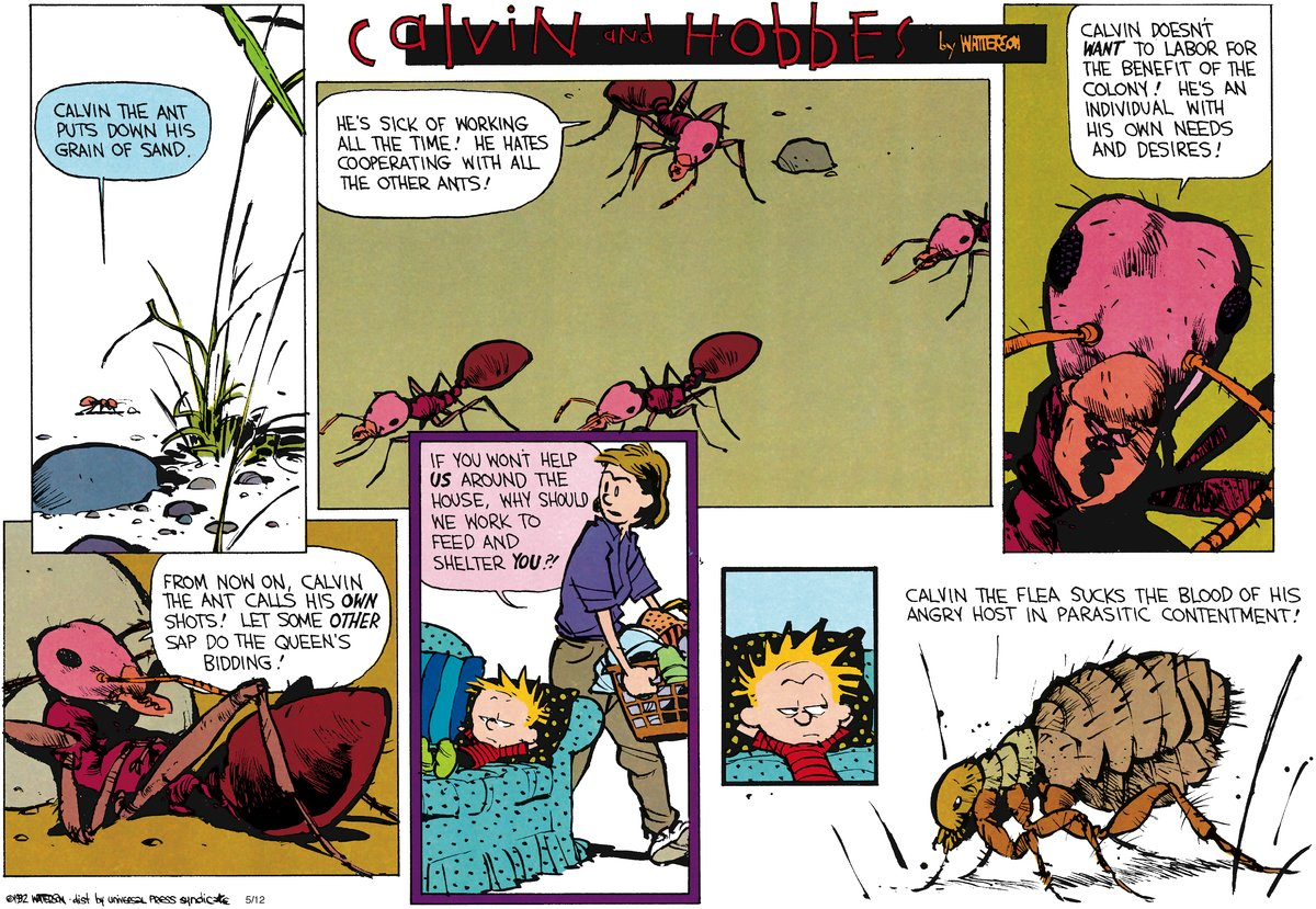Calvin and Hobbes for Jul 1, 2012 Comic Strip