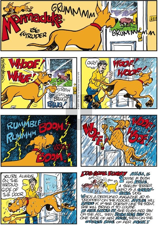 Marmaduke - Sunday January 6, 2013 Comic Strip
