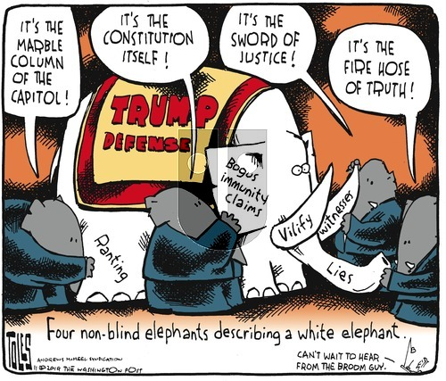 Tom Toles on Sunday November 17, 2019 Comic Strip