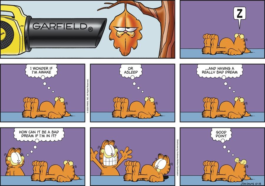 Garfield Comic Strip for October 18, 2020