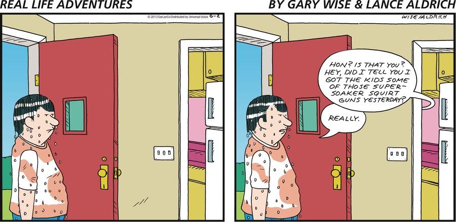 Real Life Adventures for Jun 2, 2013 Comic Strip