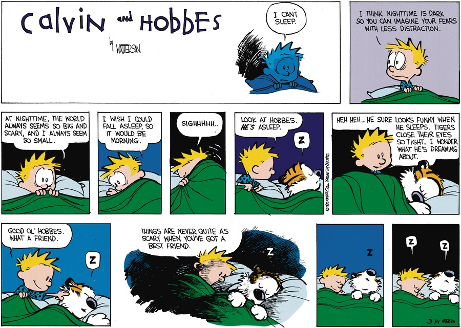 Calvin: I can't sleep. I think nighttime is dark so you can imagine your fears with less distraction. At nighttime, the world always seems so big and scary, and I always seem so small. I wish I could fall asleep, so it would be morning. Sighhhhh...Look at Hobbes. He's asleep. Hobbes: Z Calvin: Heh heh...He sure looks funny when he sleeps. Tigers close their eyes so tight. I wonder what he's dreaming about. Good ol' Hobbes. What a friend. Hobbes: Z Calvin: Things are never quite as scary when you've got a best friend. Hobbes: Z Calvin: Z Hobbes: Z