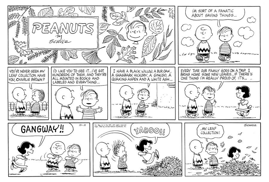 Peanuts Comic Strip for November 11, 1962