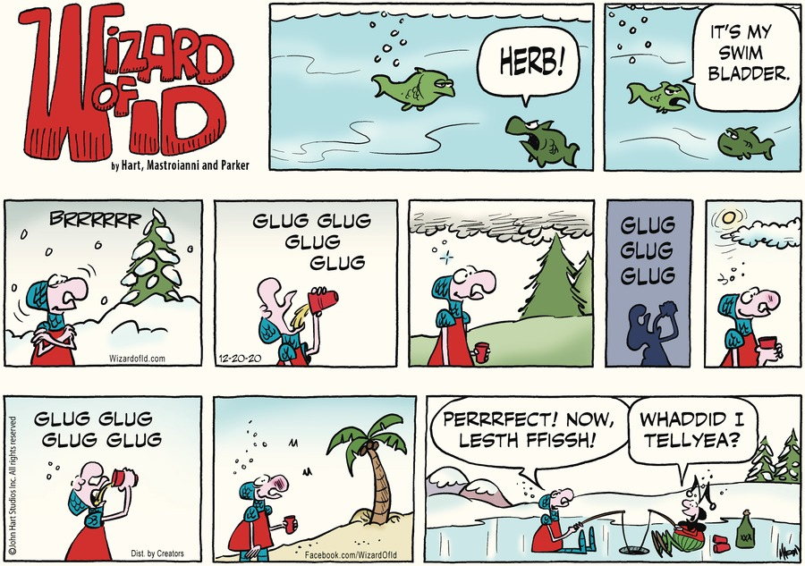 Wizard of Id Comic Strip for December 20, 2020
