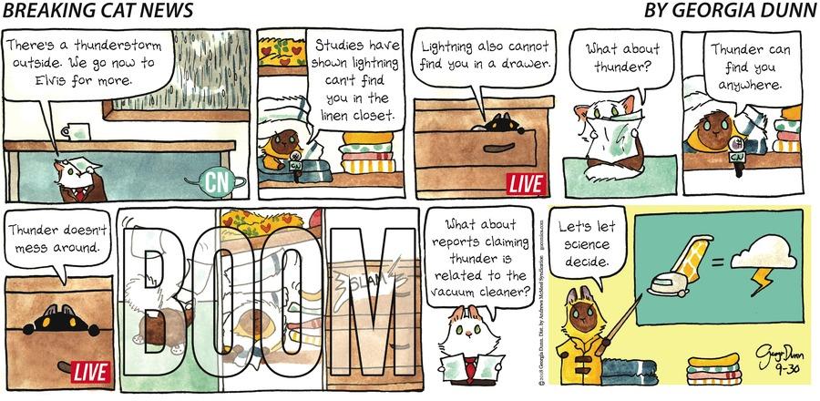 Breaking Cat News Comic Strip for September 30, 2018