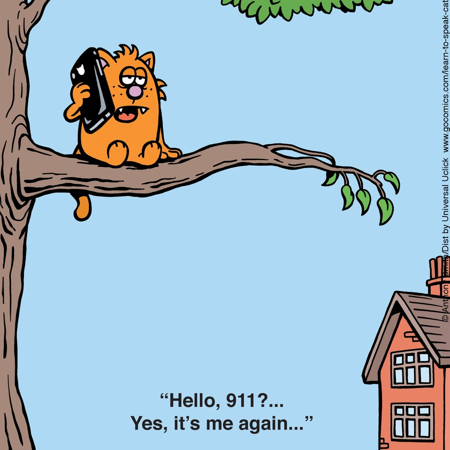 Learn to Speak Cat Comic Strip for October 25, 2015