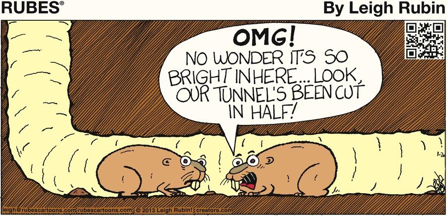 Rubes for Jan 20, 2013 Comic Strip