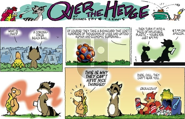 Over the Hedge on Sunday July 5, 2020 Comic Strip