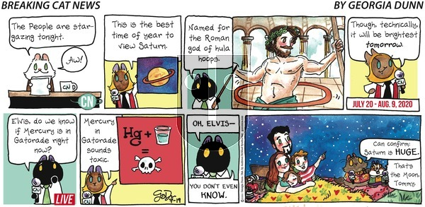 Breaking Cat News - Sunday July 19, 2020 Comic Strip