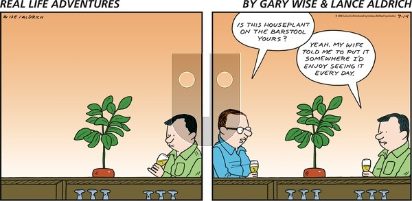 Real Life Adventures on Sunday July 14, 2019 Comic Strip