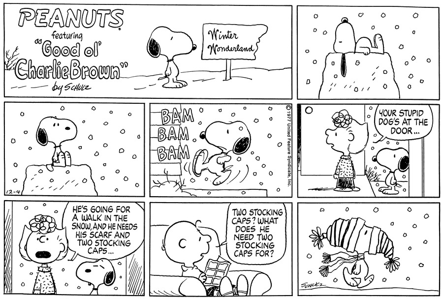 Peanuts Comic Strip for December 04, 1977