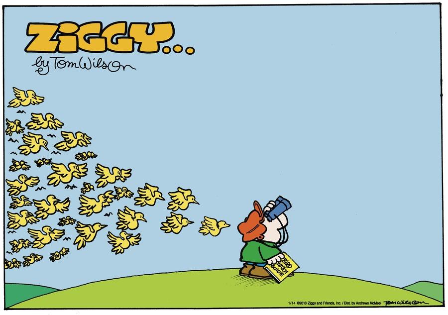 Ziggy for Jan 14, 2018 Comic Strip