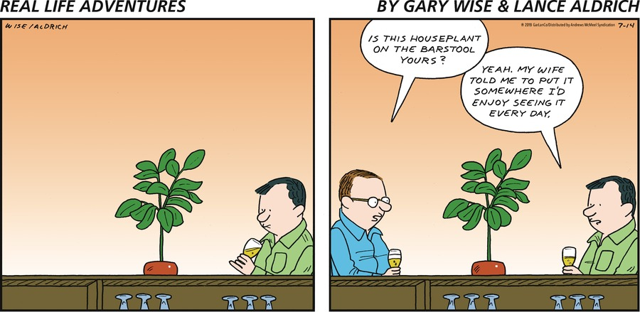 Real Life Adventures Comic Strip for July 14, 2019