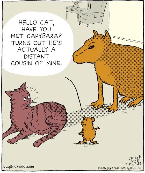 Brevity for Nov 12, 2007 Comic Strip