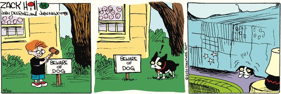 Zack Hill Comic Strip for September 20, 2020