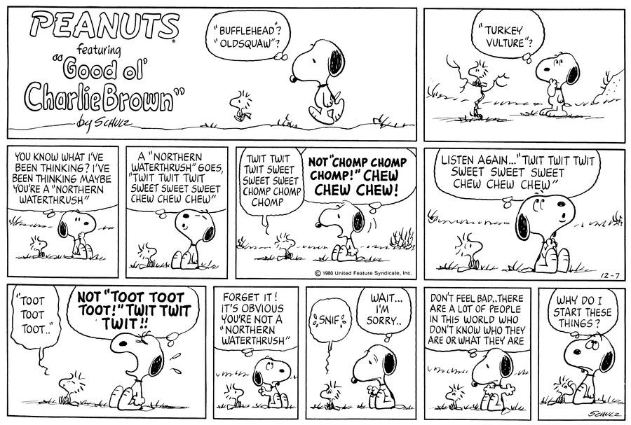 Peanuts for Dec 7, 1980 Comic Strip