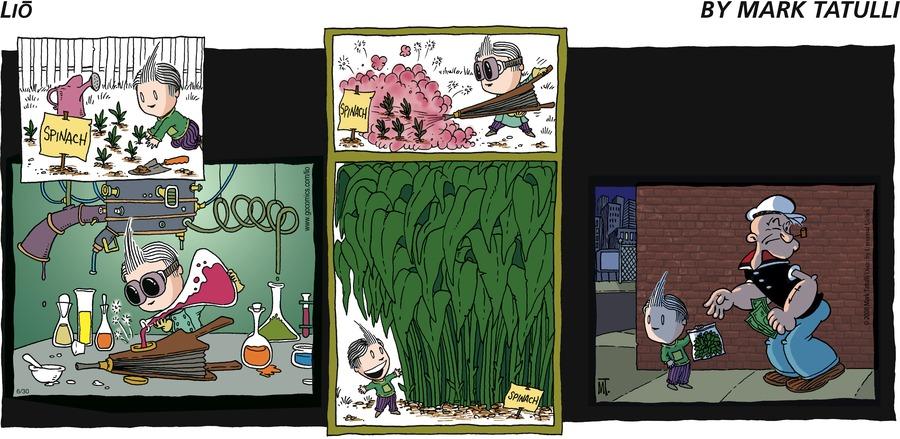 Lio Comic Strip for June 30, 2013
