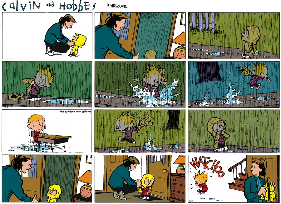 Calvin and Hobbes Comic Strip for November 08, 1992