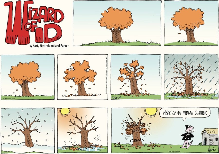 Wizard of Id Comic Strip for October 20, 2019