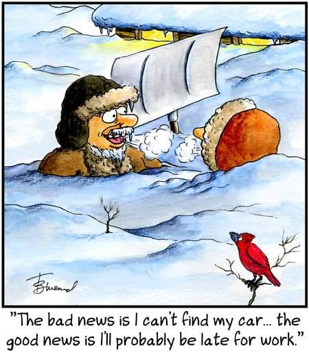 Birdbrains for Jan 3, 2018 Comic Strip