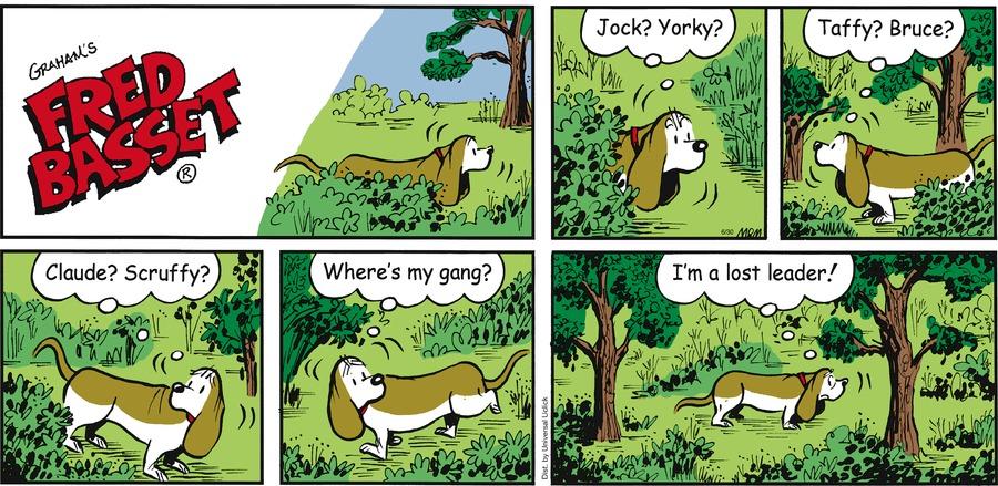 Fred Basset Comic Strip for June 30, 2013