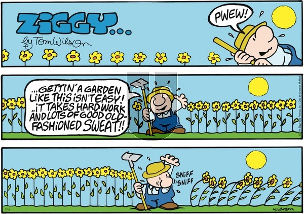Ziggy on Sunday July 11, 2021 Comic Strip