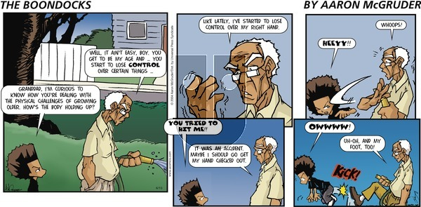 The Boondocks on Sunday June 13, 2004 Comic Strip