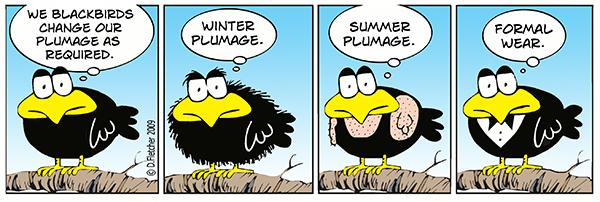 Crumb Comic Strip for July 15, 2009