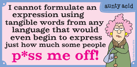 I cannot formulate an expression using tangible words from any language that would even begin to express just how much some people p*ss me off!