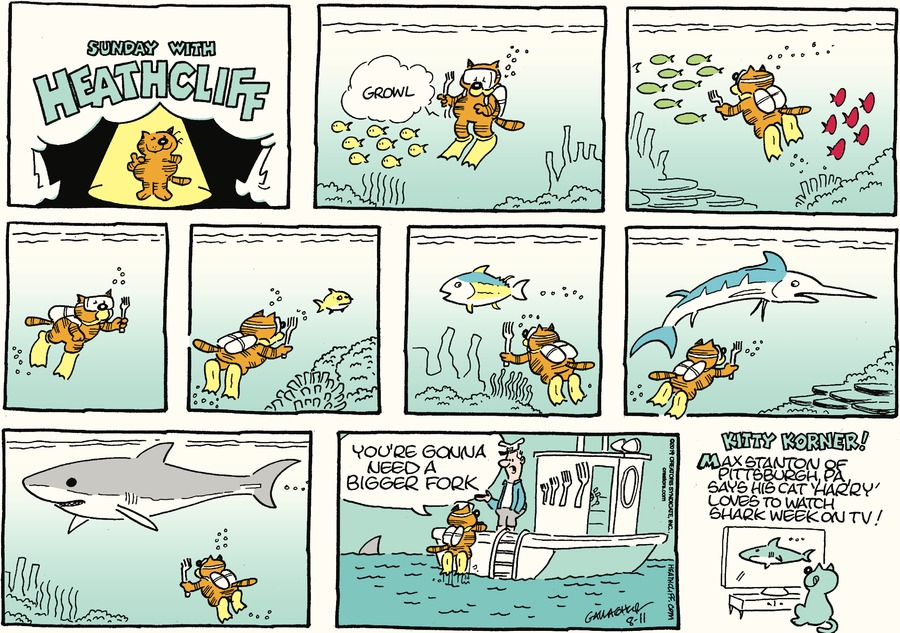 Heathcliff Comic Strip for August 11, 2019