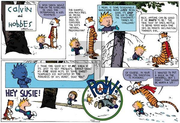 Calvin and Hobbes - Sunday December 23, 2012 Comic Strip