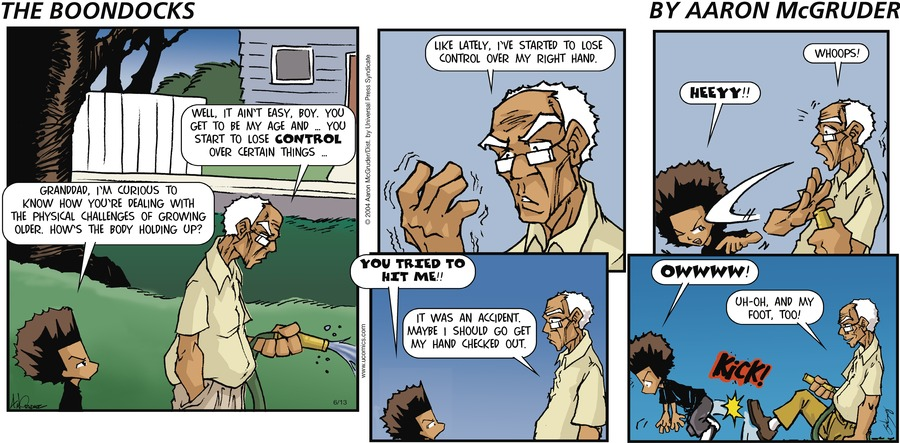 The Boondocks Comic Strip for June 13, 2004