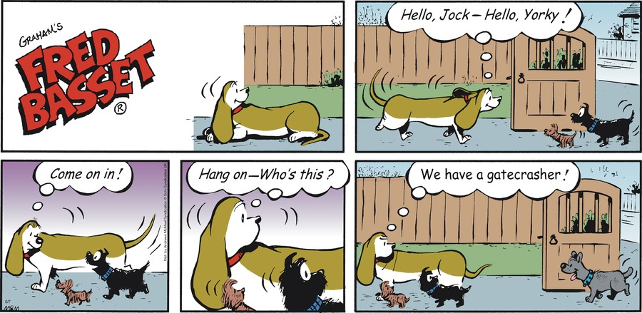 Fred Basset Comic Strip for June 07, 2020