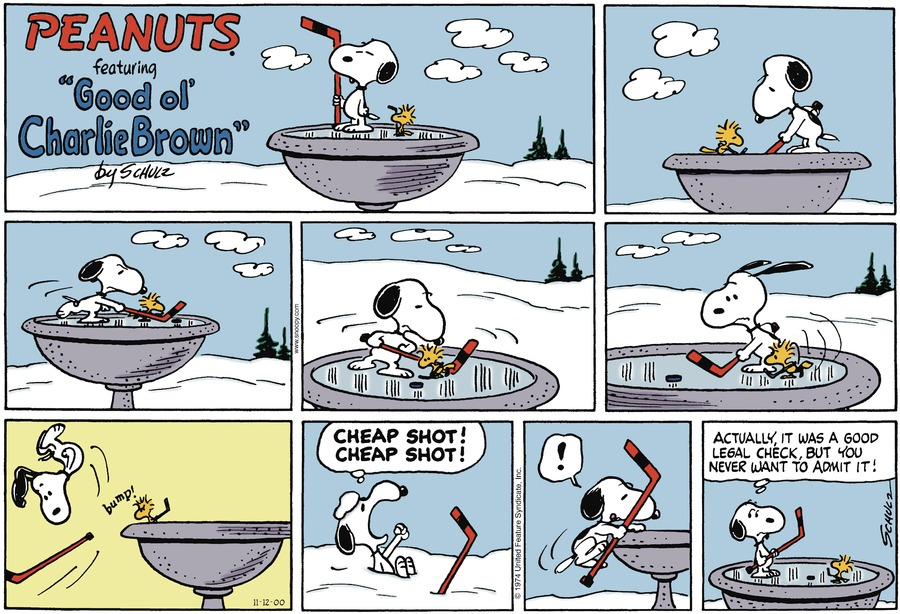 Snoopy and Woodstock are playing hockey on a frozen bird bath.
