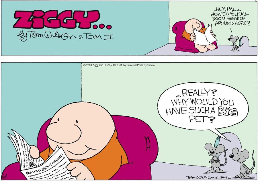 Ziggy for Aug 17, 2003 Comic Strip