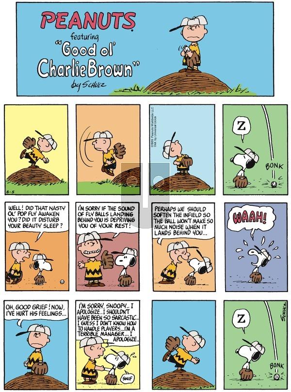Peanuts - Sunday June 5, 2016 Comic Strip