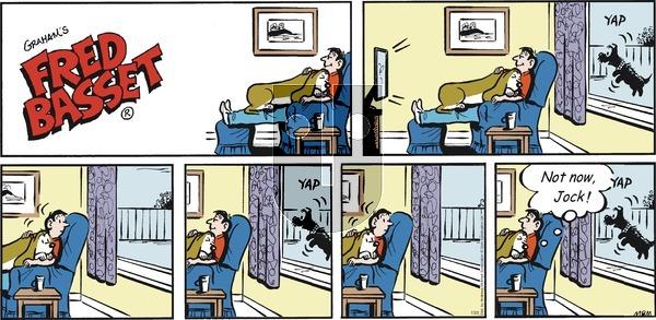 Fred Basset on Sunday July 25, 2021 Comic Strip
